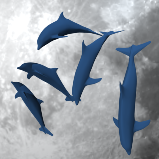 dolphinflipBig